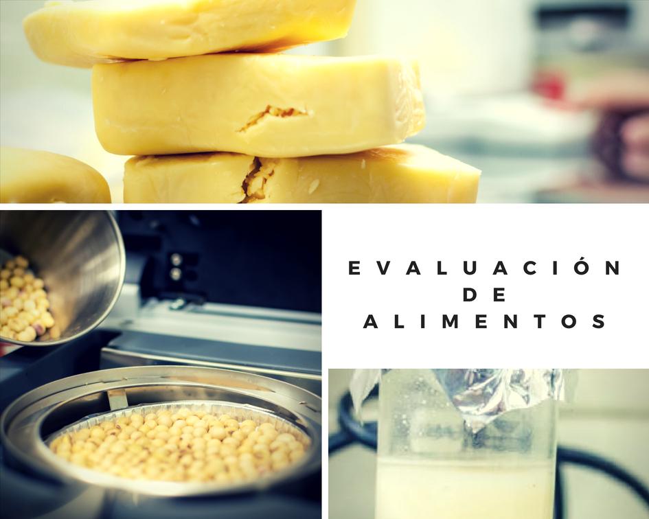 evaluacion de alimentos2